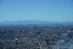 Mt Fuji in the distance