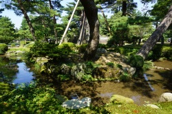 Little streams can be found across the garden