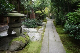 Pathway to a garden in the back