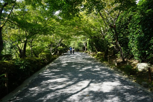 Entering Ryoanji Temple