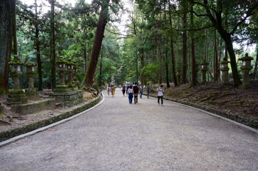 Walking through Nara Park