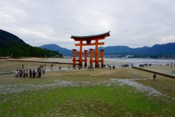 Passing by the great torii