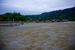 The beach starts to get wet