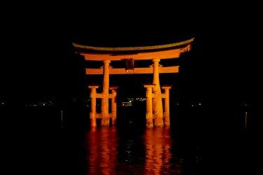 The torii gate after dark