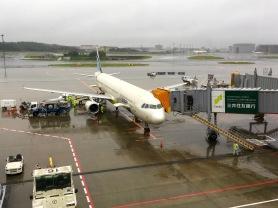 Landing at Narita Airport