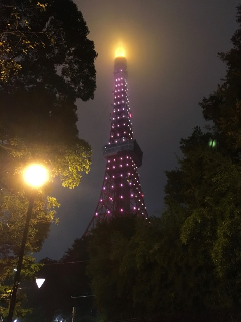 Tokyo Tower burns like a torch