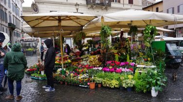 The morning market at Campo de' Fiori