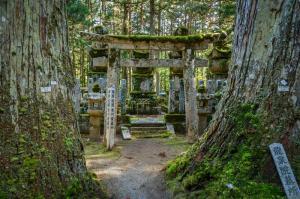 Kansai Mount Koya