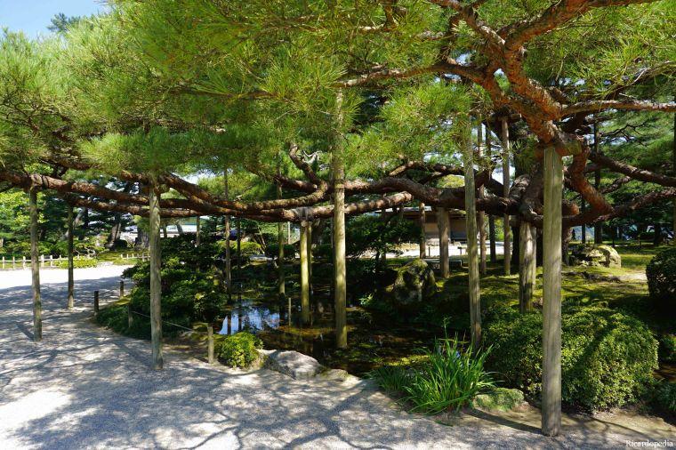 Kanazawa Kenrokuen Garden