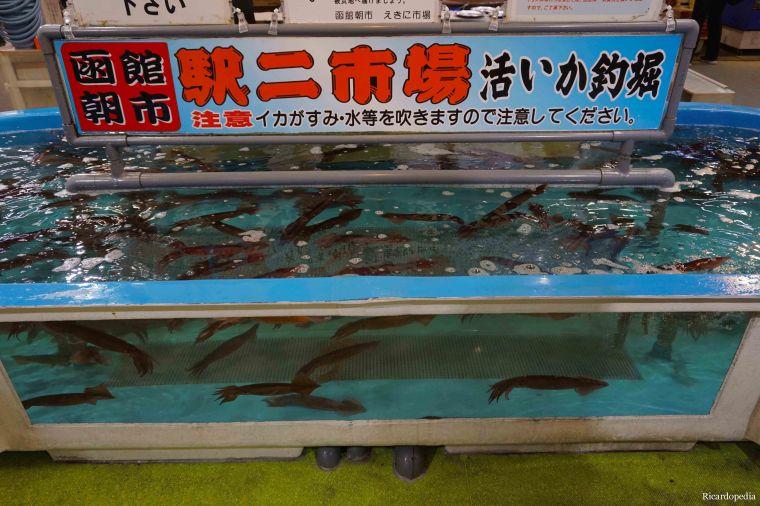 Hakodate Japan Morning Market