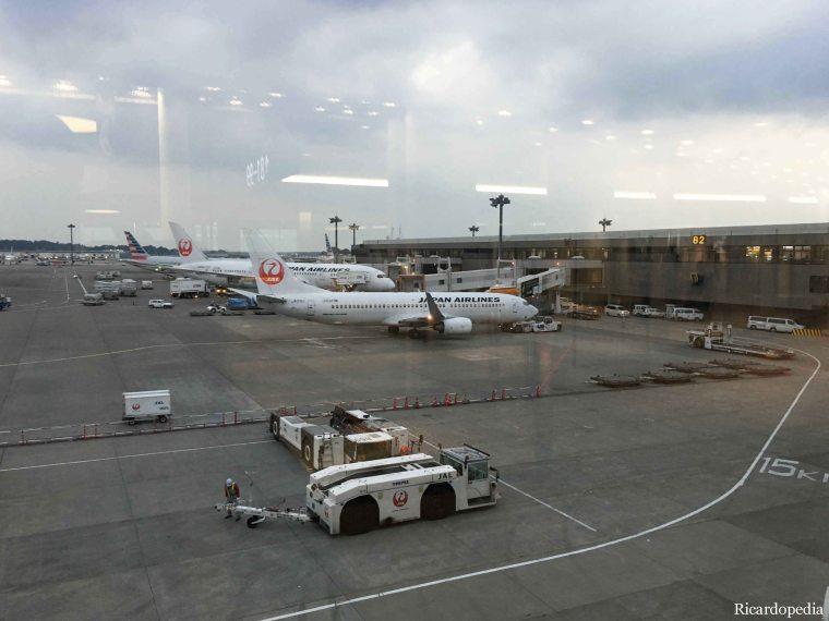 Japan-Korea 2019 Flight to Japan Narita