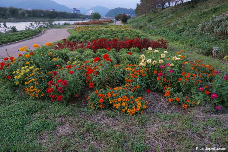 Suncheon Korea Evening Walk
