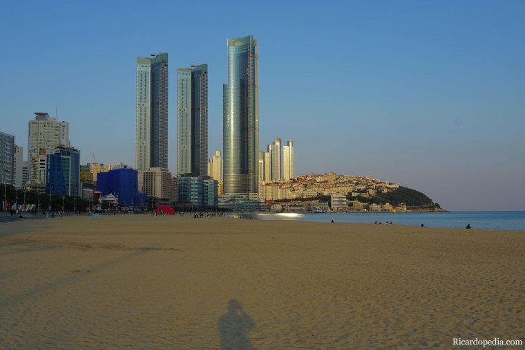 Busan Korea Dongbaekseom
