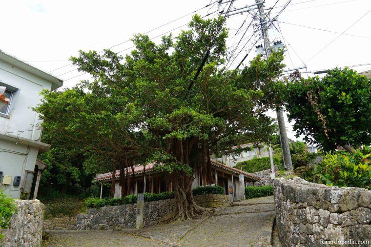 Okinawa Naha Kinjo Stone Road