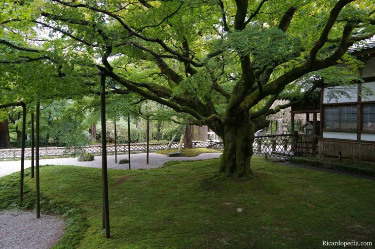 Japan Itoshima Raizansennyoji Taihioin Temple
