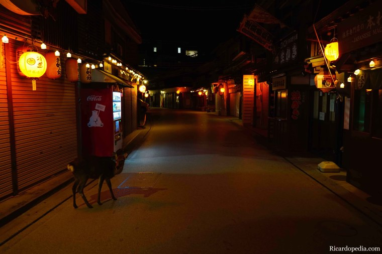 Japan Miyajima Night